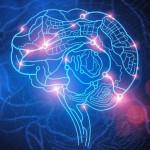 Il GPS della nostra mente: Premio Nobel per la medicina 2014